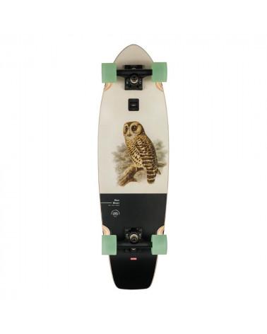 "Skateboard Wave Blazer Hoot Owl Globe 31"", shop New Surf à Dinan, Bretagne"
